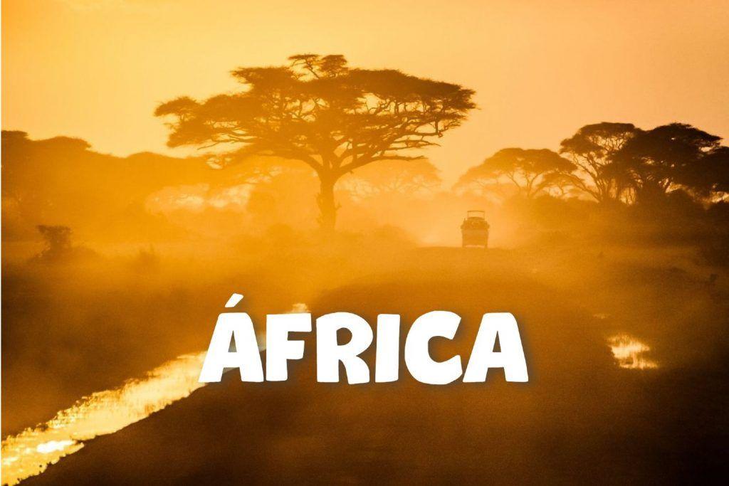 Coche alejándose en una pista africana, con un baobab al lado, durante la puesta de sol.